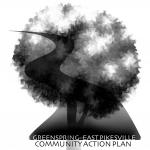 Community Action Plan